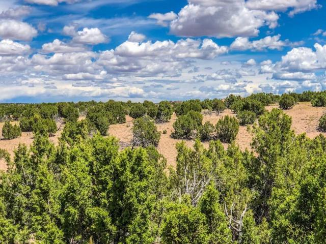 58 Barosa Road, Santa Fe, NM 87507 (MLS #945781) :: The Bigelow Team / Red Fox Realty
