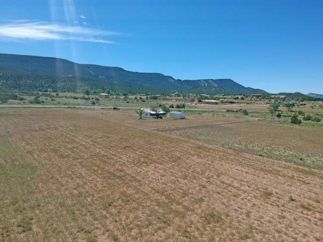 3911 New Mexico State 290 Road Highway, Ponderosa, NM 87044 (MLS #945813) :: Campbell & Campbell Real Estate Services