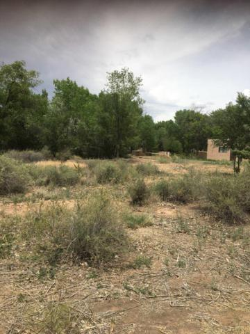 Coronado Road, Corrales, NM 87048 (MLS #946215) :: Campbell & Campbell Real Estate Services