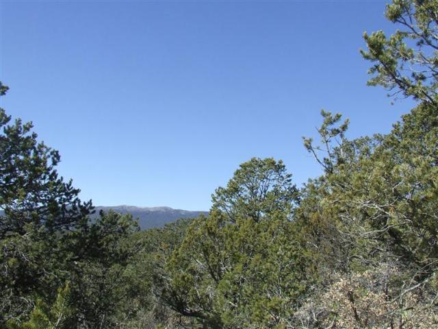 91 Lost Valley Loop, Cedar Crest, NM 87008 (MLS #946346) :: Campbell & Campbell Real Estate Services