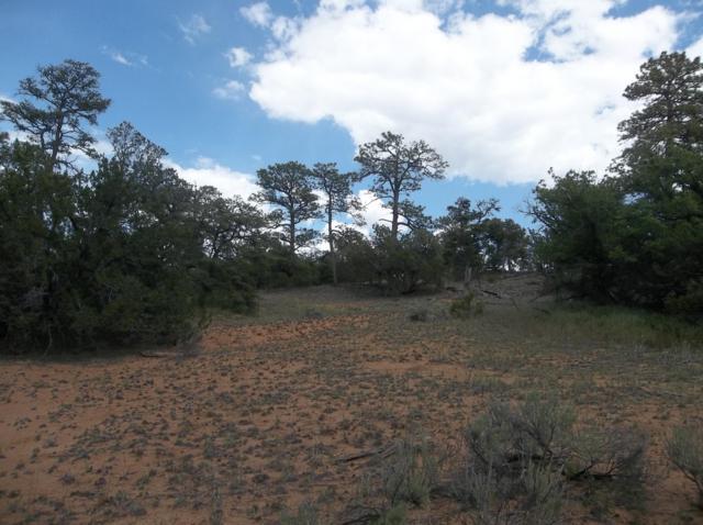 230 Ridge Road, Ramah, NM 87321 (MLS #946573) :: Sandi Pressley Team