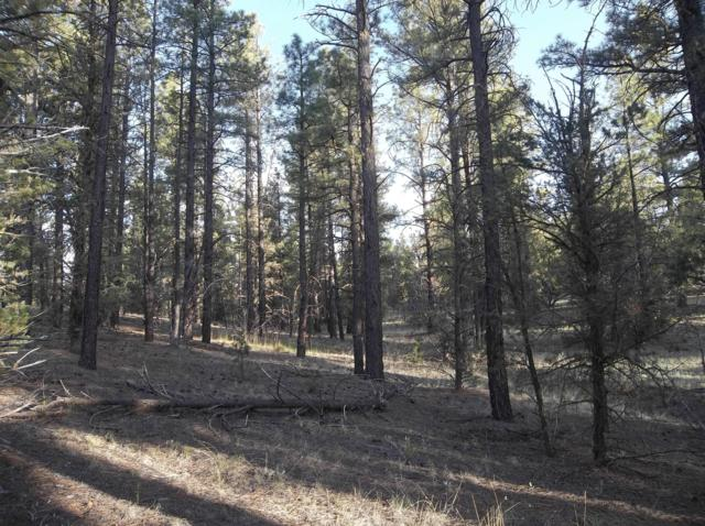 TractA-2-A Box S Ranch Road, Ramah, NM 87321 (MLS #946577) :: Silesha & Company