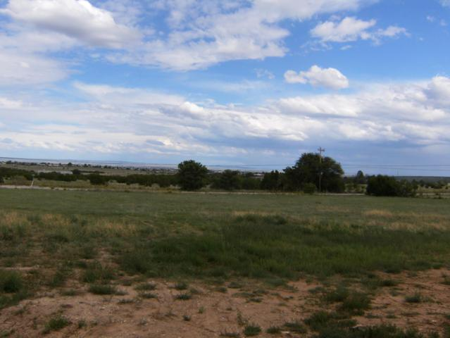 V Hill, Moriarty, NM 87035 (MLS #946610) :: Campbell & Campbell Real Estate Services