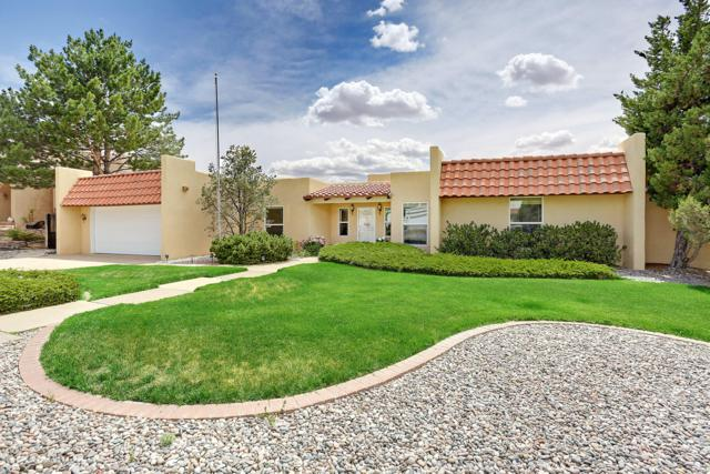 1709 Conestoga Drive SE, Albuquerque, NM 87123 (MLS #946781) :: The Bigelow Team / Realty One of New Mexico