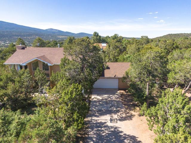 17 Sierra Blanca Road, Cedar Crest, NM 87008 (MLS #946838) :: Campbell & Campbell Real Estate Services