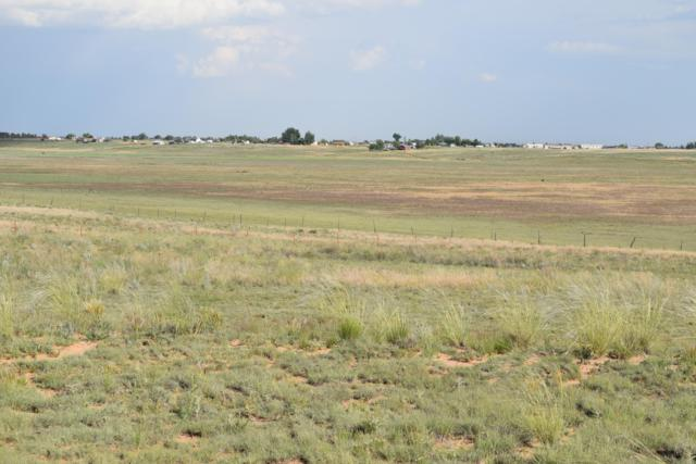 Rabbit Run Court, Moriarty, NM 87035 (MLS #946884) :: The Bigelow Team / Red Fox Realty