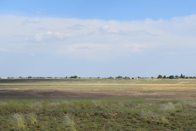 Rabbit Run Court, Moriarty, NM 87035 (MLS #946885) :: The Bigelow Team / Red Fox Realty