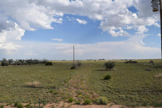 Rabbit Run Court, Moriarty, NM 87035 (MLS #946888) :: The Bigelow Team / Red Fox Realty