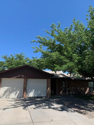 8252 Ruidoso Road NE, Albuquerque, NM 87109 (MLS #946906) :: Silesha & Company