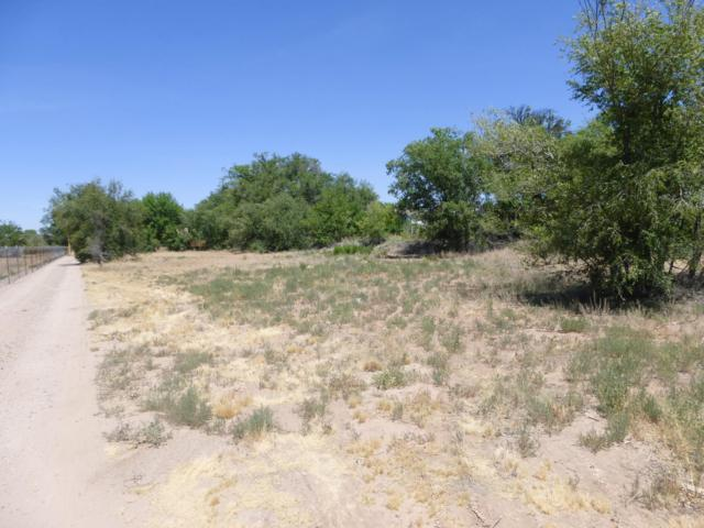 Vacant Lot On Leal Rd, Corrales, NM 87048 (MLS #947027) :: Campbell & Campbell Real Estate Services