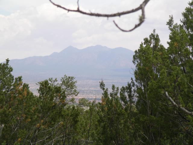 Pinon Park, Sandia Park, NM 87047 (MLS #947047) :: Campbell & Campbell Real Estate Services