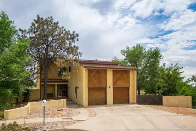 6900 Cherry Hills Place NE, Albuquerque, NM 87111 (MLS #947348) :: The Bigelow Team / Realty One of New Mexico
