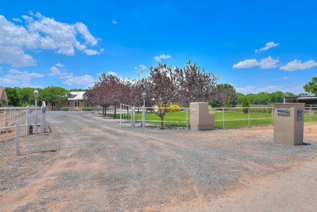 325 Braught Lane, Bosque Farms, NM 87068 (MLS #947375) :: Silesha & Company