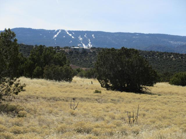 1 Osito Road, Sandia Park, NM 87047 (MLS #947381) :: Campbell & Campbell Real Estate Services