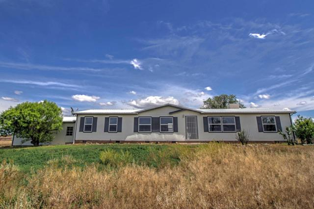 43 Coyote Loop, Moriarty, NM 87035 (MLS #947385) :: Campbell & Campbell Real Estate Services