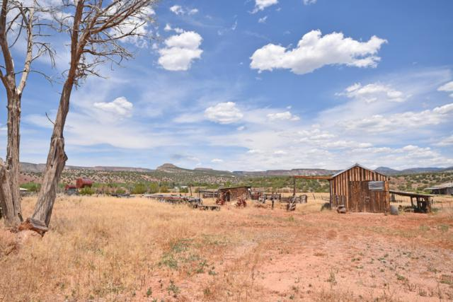 3744 New Mexico State 290 Road, Ponderosa, NM 87044 (MLS #947397) :: Campbell & Campbell Real Estate Services