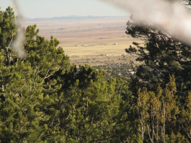 0 Skyview Road, Edgewood, NM 87015 (MLS #947442) :: Campbell & Campbell Real Estate Services