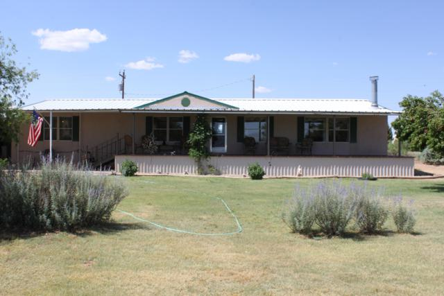 309 Big Mesa Avenue, Conchas Dam, NM 88416 (MLS #947535) :: Campbell & Campbell Real Estate Services