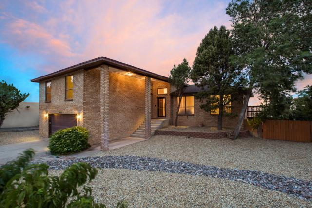 2521 Myra Place NE, Albuquerque, NM 87112 (MLS #947611) :: The Bigelow Team / Realty One of New Mexico