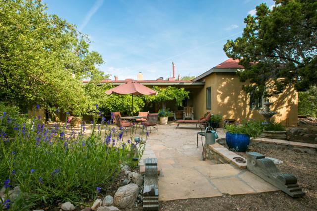 44 Camino De La Rosa Castilla, Placitas, NM 87043 (MLS #947669) :: Campbell & Campbell Real Estate Services
