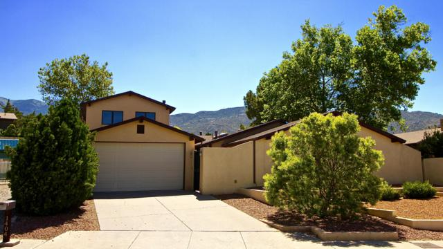 1404 Stutz Drive NE, Albuquerque, NM 87112 (MLS #947679) :: The Bigelow Team / Realty One of New Mexico