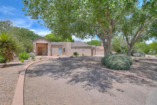 275 Bazan Loop, Corrales, NM 87048 (MLS #947687) :: Campbell & Campbell Real Estate Services