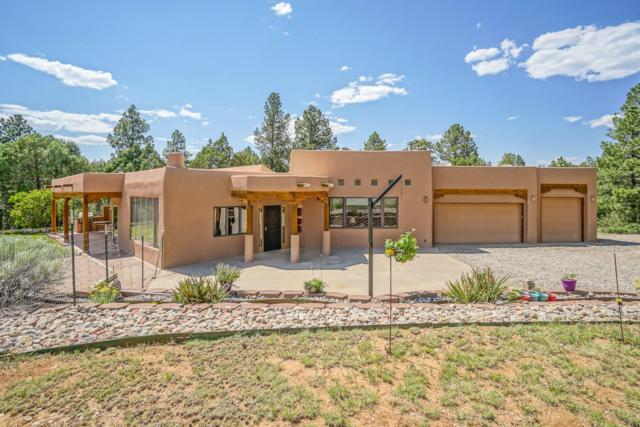20 Valle Lindo Road, Tijeras, NM 87059 (MLS #947700) :: Campbell & Campbell Real Estate Services