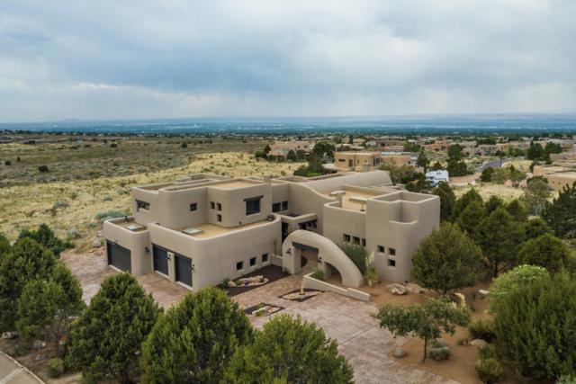 6009 Beargrass Court NE, Albuquerque, NM 87111 (MLS #947713) :: The Bigelow Team / Red Fox Realty