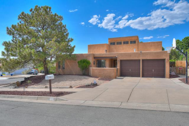 14201 Vista Court NE, Albuquerque, NM 87123 (MLS #947750) :: The Bigelow Team / Realty One of New Mexico