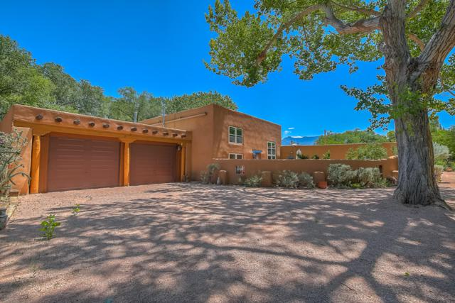 155 White Horse Lane, Corrales, NM 87048 (MLS #947797) :: Campbell & Campbell Real Estate Services