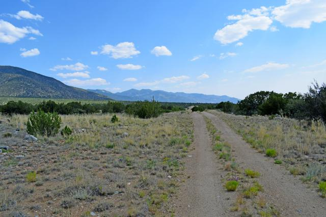 Lot 1 Rio Del Oro, Los Lunas, NM 87031 (MLS #947798) :: The Bigelow Team / Red Fox Realty