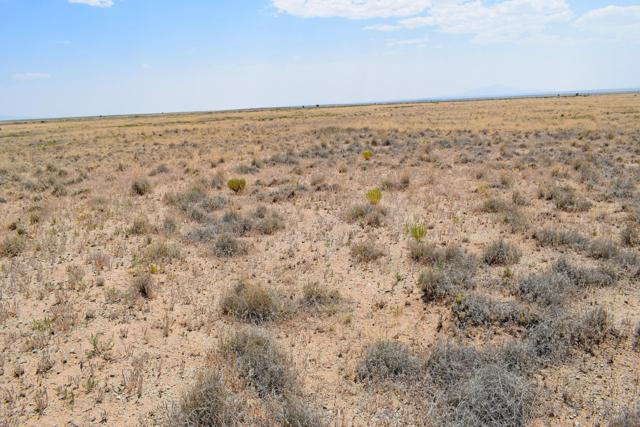 Lot 22 Rio Del Oro, Los Lunas, NM 87031 (MLS #947821) :: The Bigelow Team / Red Fox Realty