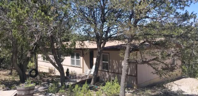 72 Tablazon Road, Tijeras, NM 87059 (MLS #947830) :: Campbell & Campbell Real Estate Services