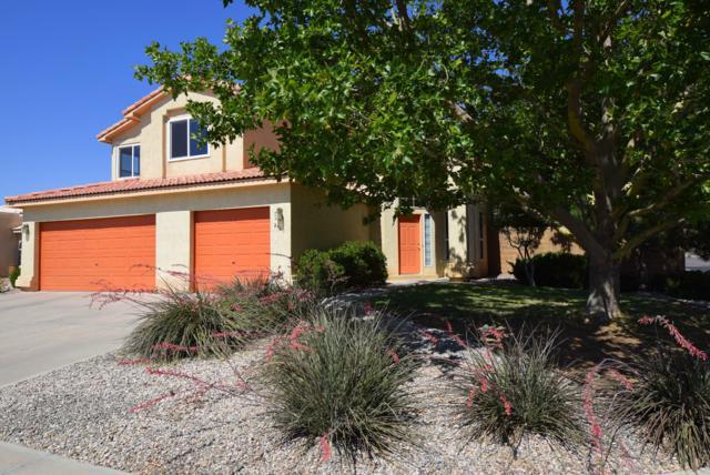 2143 Calle Azulejo, Albuquerque, NM 87120 (MLS #947891) :: Campbell & Campbell Real Estate Services