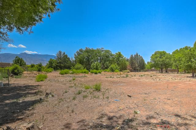 White Horse, Corrales, NM 87048 (MLS #947967) :: Campbell & Campbell Real Estate Services