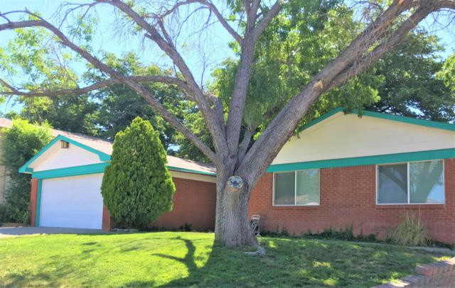 3408 Montreal St. NE, Albuquerque, NM 87111 (MLS #948183) :: Campbell & Campbell Real Estate Services