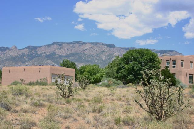 Del Rey Avenue NE, Albuquerque, NM 87122 (MLS #948750) :: Campbell & Campbell Real Estate Services