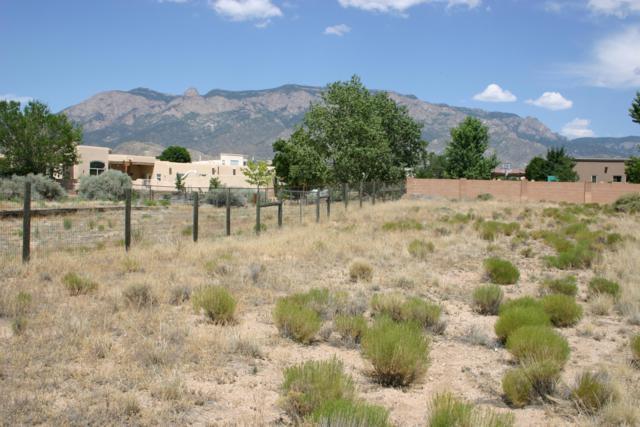 Glendale Avenue NE, Albuquerque, NM 87122 (MLS #948758) :: Campbell & Campbell Real Estate Services
