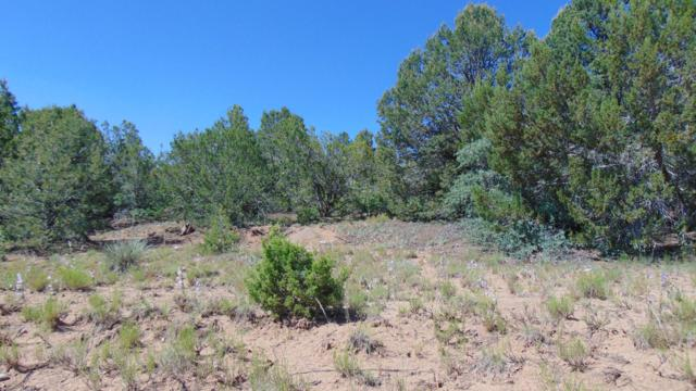 4 Belle Starr Road, Edgewood, NM 87015 (MLS #948773) :: Campbell & Campbell Real Estate Services