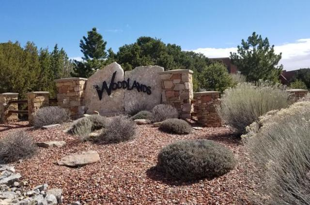 6 Falcon Court, Tijeras, NM 87059 (MLS #948797) :: Berkshire Hathaway HomeServices Santa Fe Real Estate