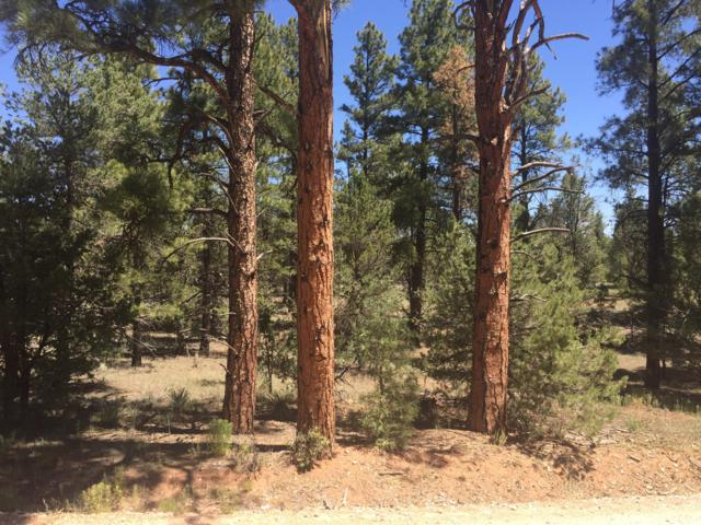 Lot 11 Culebra Road, Ramah, NM 87321 (MLS #948894) :: Silesha & Company