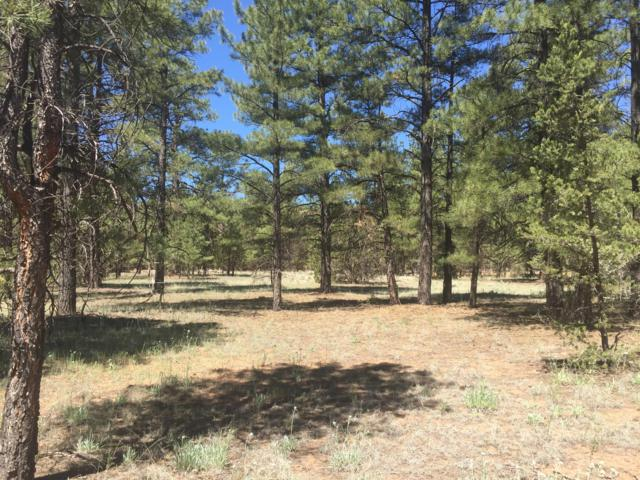 Lot 16 Timberlake Road, Ramah, NM 87321 (MLS #948895) :: Silesha & Company