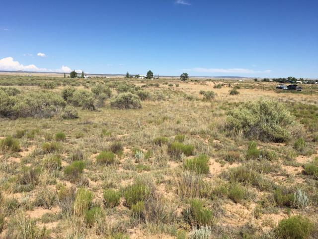 Roan Avenue, Moriarty, NM 87035 (MLS #948977) :: The Bigelow Team / Red Fox Realty