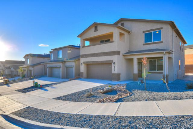 1135 Grace Street NE, Rio Rancho, NM 87144 (MLS #948998) :: Campbell & Campbell Real Estate Services