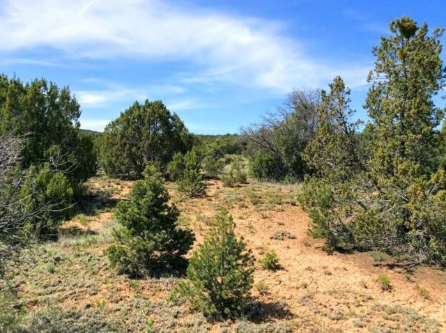 66 Jesse James Road, Edgewood, NM 87015 (MLS #949016) :: The Buchman Group