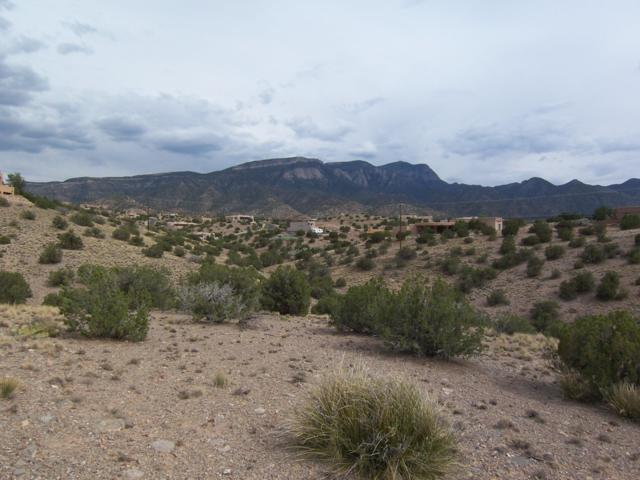Calle Del Sol, Placitas, NM 87043 (MLS #949029) :: Campbell & Campbell Real Estate Services