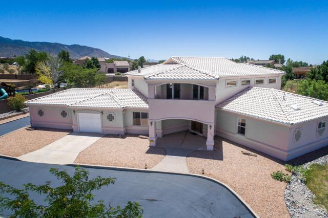 11500 Anaheim Avenue NE, Albuquerque, NM 87122 (MLS #949073) :: Campbell & Campbell Real Estate Services