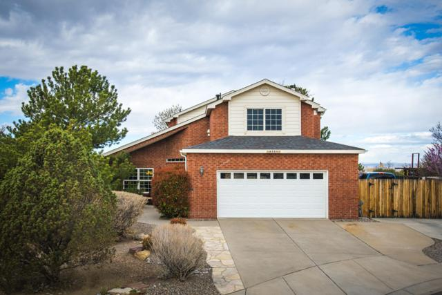 8505 D Reed Court NE, Albuquerque, NM 87122 (MLS #949099) :: The Bigelow Team / Red Fox Realty