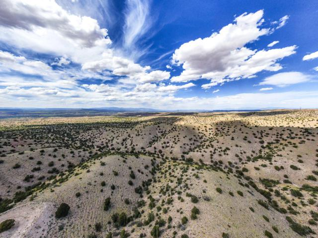 Camino Zia, Placitas, NM 87043 (MLS #949102) :: The Buchman Group
