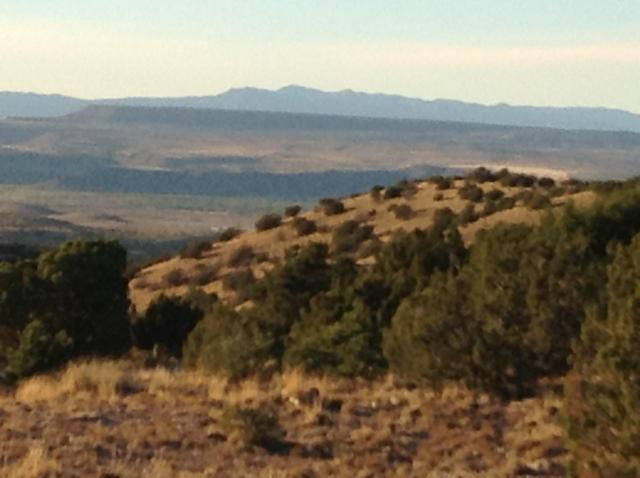 205 Camino Barranca, Placitas, NM 87043 (MLS #949441) :: The Buchman Group